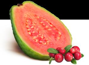 Guave und Cranberry