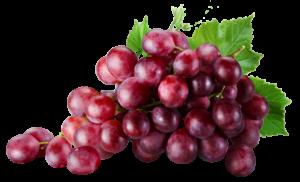Rote Trauben